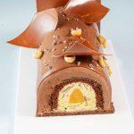 Gianduja chocolate gelato, hazelnut gelato with chocolate layers, apricot jelly and gianduja glacing